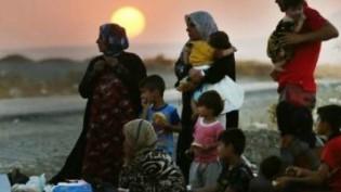 Êzidîler göç yollarında yaşam savaşı veriyor