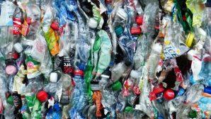 Bütün Çalışmalara Rağmen Market Rafları Daha Önce Olmadığı Kadar Plastikle Dolu